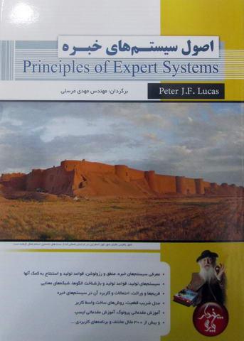 اصول سیستم های خبره